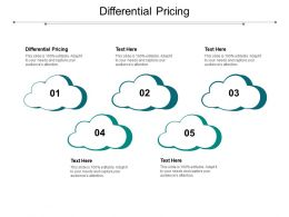 Differential Pricing Ppt Powerpoint Presentation Icon Shapes Cpb
