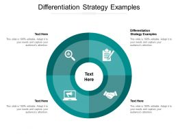 Differentiation Strategy Examples Ppt Powerpoint Presentation Show Background Cpb