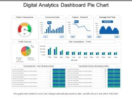 Digital Analytics Dashboard Pie Chart