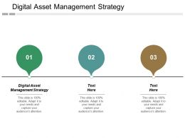 Digital Asset Management Strategy Ppt Powerpoint Presentation Inspiration Show Cpb