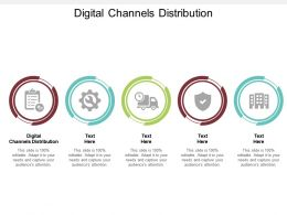 Digital Channels Distribution Ppt Powerpoint Presentation Show Layout Cpb