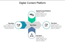 Digital Content Platform Ppt Powerpoint Presentation Icon Rules Cpb