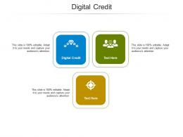 Digital Credit Ppt Powerpoint Presentation Styles Example Introduction Cpb