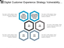 Digital Customer Experience Strategy Vulnerability Management Penetration Testing Cpb