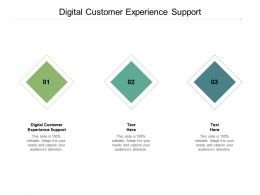 Digital Customer Experience Support Ppt Powerpoint Presentation Professional Cpb