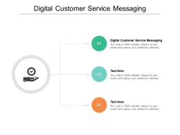 Digital Customer Service Messaging Ppt Powerpoint Presentation Pictures Outline Cpb