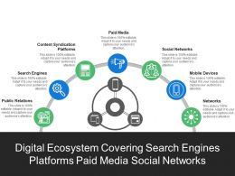 digital_ecosystem_covering_search_engines_platforms_paid_media_social_networks_Slide01