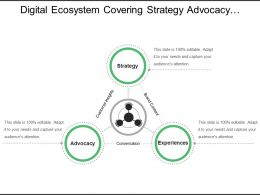 Digital Ecosystem Covering Strategy Advocacy And Experiences