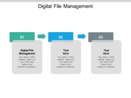 Digital File Management Ppt Powerpoint Presentation Show Format Ideas Cpb