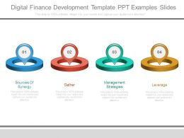 Digital Finance Development Template Ppt Examples Slides