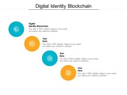 Digital Identity Blockchain Ppt Powerpoint Presentation Portfolio Gallery Cpb