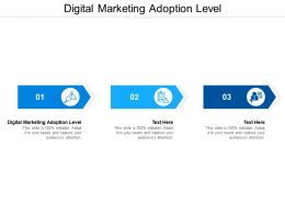 Digital Marketing Adoption Level Ppt Powerpoint Presentation Outline Themes Cpb
