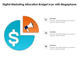 Digital Marketing Allocation Budget Icon With Megaphone