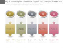 Digital Marketing And Ecommerce Diagram Ppt Examples Professional