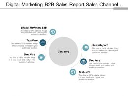Digital Marketing B2b Sales Report Sales Channel Strategy Cpb