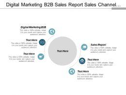 digital_marketing_b2b_sales_report_sales_channel_strategy_cpb_Slide01