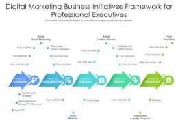 Digital Marketing Business Initiatives Framework For Professional Executives