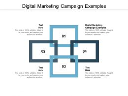 Digital Marketing Campaign Examples Ppt Powerpoint Presentation Summary Graphics Design Cpb