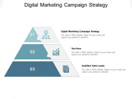Digital Marketing Campaign Strategy Ppt Powerpoint Presentation Example 2015 Cpb