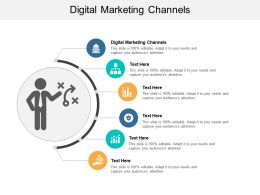 Digital Marketing Channels Ppt Powerpoint Presentation Show Design Ideas Cpb