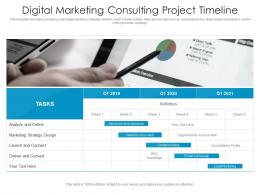 Digital Marketing Consulting Project Timeline