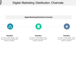 Digital Marketing Distribution Channels Ppt Powerpoint Presentation Inspiration Maker Cpb