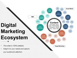 Digital Marketing Ecosystem Ppt Presentation