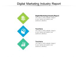 Digital Marketing Industry Report Ppt Powerpoint Presentation Show Introduction Cpb