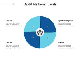 Digital Marketing Levels Ppt Powerpoint Presentation Infographics Graphics Example Cpb