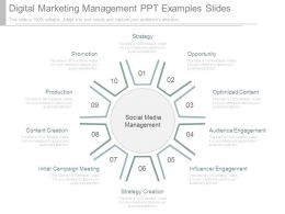 Digital Marketing Management Ppt Examples Slides