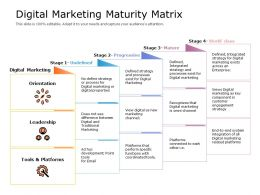 Digital Marketing Maturity Matrix