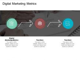 Digital Marketing Metrics Ppt Powerpoint Presentation File Display Cpb