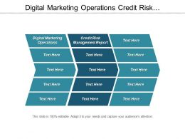 Digital Marketing Operations Credit Risk Management Report Business Practice Cpb
