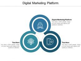 Digital Marketing Platform Ppt Powerpoint Presentation Icon Example Topics Cpb