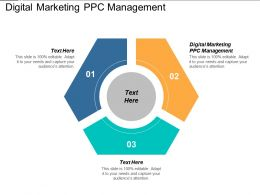 Digital Marketing PPC Management Ppt Powerpoint Presentation Gallery Background Images Cpb