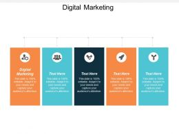 Digital Marketing Ppt Powerpoint Presentation File Example Introduction Cpb