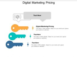 Digital Marketing Pricing Ppt Powerpoint Presentation Icon Show Cpb