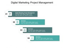 Digital Marketing Project Management Ppt Powerpoint Presentation Slides Layout Cpb
