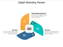 Digital Marketing Review Ppt Powerpoint Presentation Icon Slides Cpb