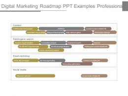 Digital Marketing Roadmap Ppt Examples Professional