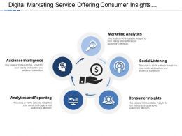 Digital Marketing Service Offering Consumer Insights And Audience Intelligence