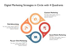 Digital Marketing Strategies In Circle With 4 Quadrants