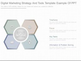 Digital Marketing Strategy And Tools Template Example Of Ppt