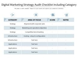 Digital Marketing Strategy Audit Checklist Including Category