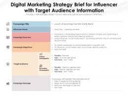 Digital Marketing Strategy Brief For Influencer With Target Audience Information