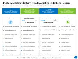 Digital Marketing Strategy Email Marketing Budget And Package Ppt Powerpoint Presentation Inspiration Layouts