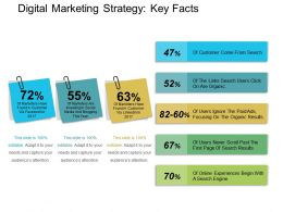 Digital Marketing Strategy Key Facts Powerpoint Layout PPT Example