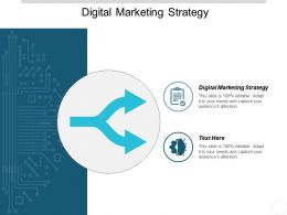 Digital Marketing Strategy Ppt Powerpoint Presentation Gallery Graphics Pictures Cpb
