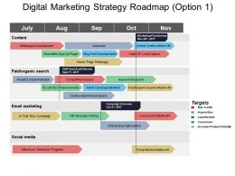 Digital Marketing Strategy Roadmap Option 1 Ppt Example 2018