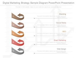 Digital Marketing Strategy Sample Diagram Powerpoint Presentation